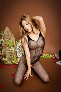 Whole Body Stocking Lingerie FL883