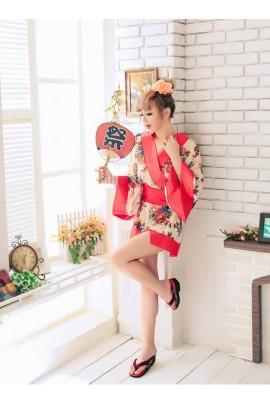 Japanese Kimono Style Gown